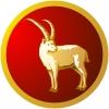 Znaki zodiaków - Koziorożec